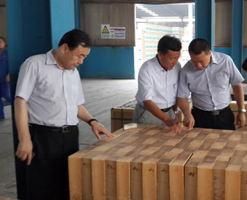 新郑循环流化床锅炉项目
